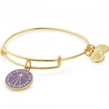 Alex and Ani Harry Potter The Wand Chooses The  Wizard EWB SG