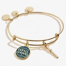 Alex and Ani Harry Potter Expelliarmos Duo Charm SG