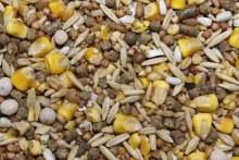 Hawaiian Grain Island Gamebird Mix 50 lbs.