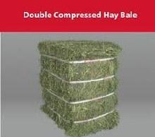 Alfalfa Hay Bale, Double Compressed 100-110 lbs.