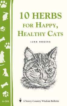 10 Herbs For Healthy Cats