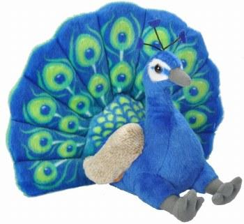 Peacock mini