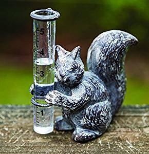 Squirrel Rain Guage