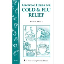 Growing Herbs For Cold And Flu