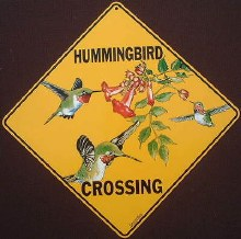 Hummingbird Crossing