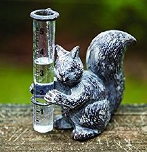 Squirrel Rain Guage