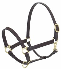 Brown Leather Stable Halter Cob Size