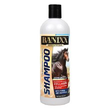 BANIXX SHAMPOO 16 OZ