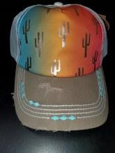 Catchfly Ponytail Cap Rainbow w. Cactus