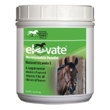 ELEVATE MAINTENANCE POWDER 2LB