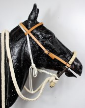 Western Horse Breaking Training Hackamore USA Made