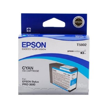 Epson T580 Series Inks T5820 Maintenance Cartridge
