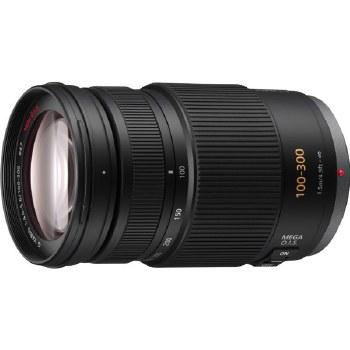 Panasonic H-FS 100-300mm F4.0-5.6 G Vario Mega O.I.S.