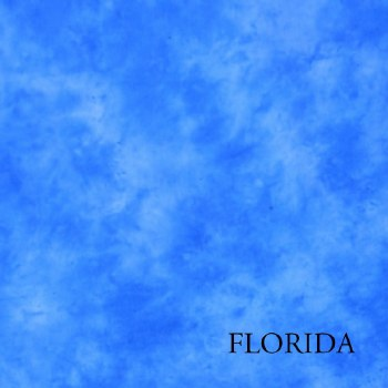Lastolite 7546 Knitted 3 x 3.5M Florida
