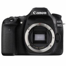 Canon EOS 80D Body (USED)