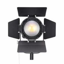 Nanguang CN-60FC LED Fresnel