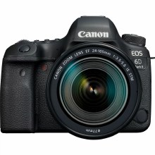 Canon EOS 6D Mark II with EF 24-105mm F3.5-5.6 IS STM