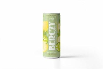 Lemon & Lime Hard Seltzer