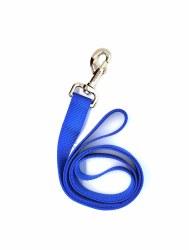 "Coastal Blue 4 Foot Nylon Leash 1"""
