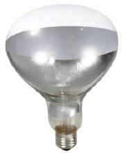 Miller Little Giant 250 Watt Clear Heat Lamb Bulb