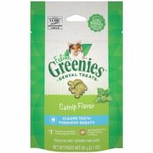 Feline Greenies Dental Treats Cat Nip Flavor 2.1oz