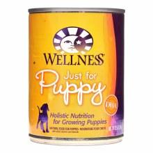 Wellness Puppy Chicken and Barley 12.5oz