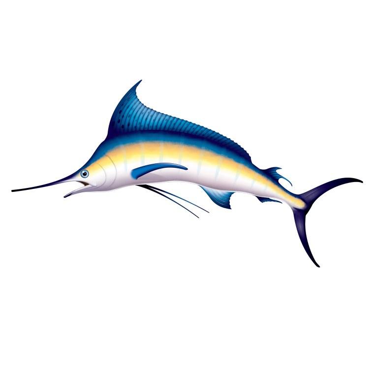 Marlin Prop