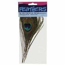 Peacock Feather 8in 2pk