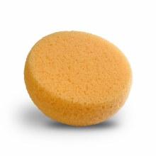 Sponge Foam Hydra
