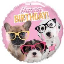 "MYLR HB Puppies w/ Glasses 18"""