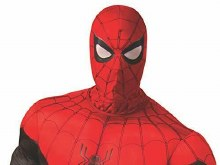 Spiderman Adult Fabric Mask
