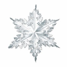 Snowflake Metallic Silver