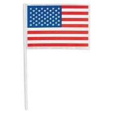 American Flag Plastic 48pk