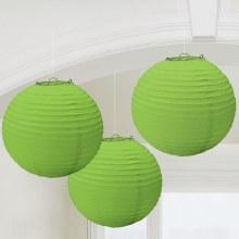 Lantern Kiwi 3pk