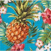 Aloha Lunch Napkins 16ct