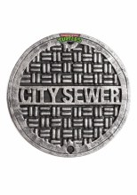 Shield Sewer Cover