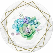Succulent 7in Plate 8ct