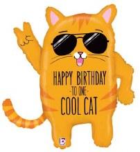 "Mylr 33"" HB Cool Cat"