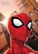 Spiderman Wonder Loot Bags