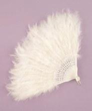 Fan Feather White
