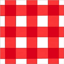 American Summer Picnic Gingham Lunch Napkins 16ct