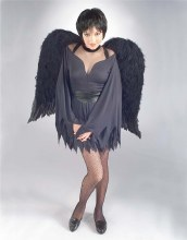 Wings Feather 36in Black