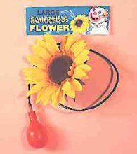 Giant Squirt Sunflower