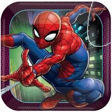 Spiderman Wonder 9in Plt