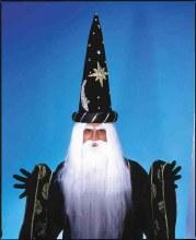 Wig Merlin w/ Beard