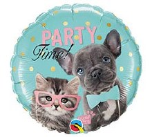 """Party Time Kitten and Puppy ~ 18"""""""