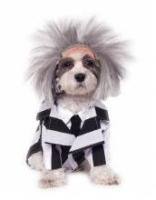 Beetlejuice Pet XL