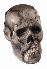 Skull Rotting Prop