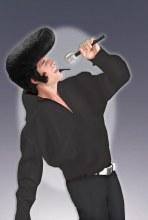 Wig Mega Rock and Roll