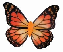 Wings Butterfly Monarch